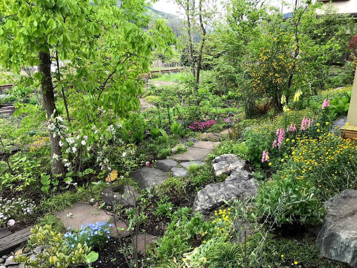 House Garden on May 4th, 2019
